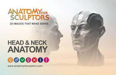 Anatomy4sculptors HEAD and NECK ANATOMY book by anatomy4sculptors