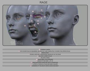 Rage by anatomy4sculptors