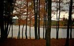 Samhain 2009 - 3 by GeoffroyVincens