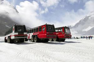 Snow Coaches by MisterKrababbel