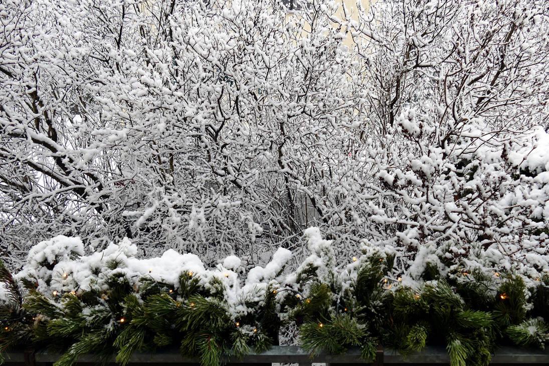 A Whole Lotta Snow by MisterKrababbel