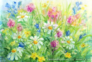 Wild flowers by rosinka