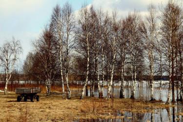 In the village by Irula-n