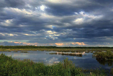 Near the swamp by Irula-n