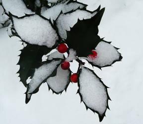Winter time by illegal-fallen-angel