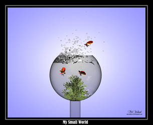 My World is too small by innovation4d