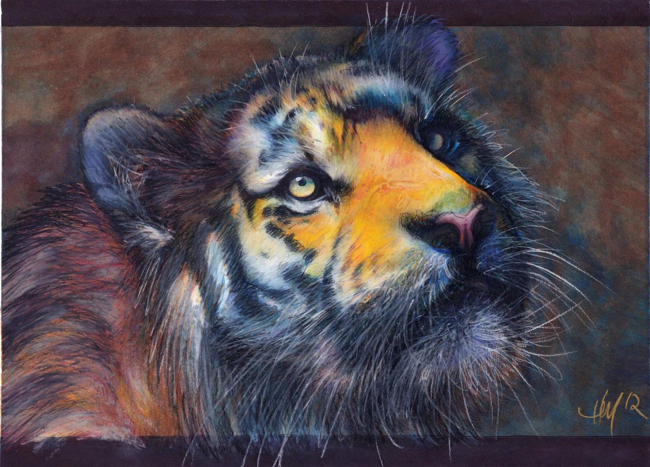 Tigery by Novawuff