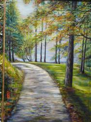 Lake shore Path by Wildatart24