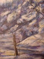 snowy Visitor by Wildatart24