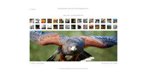 Gallery of Photography by spendavis