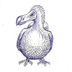Dodo by Gloamdust