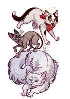 cats by Fukari