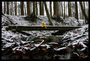 Eric in the woods 1 by fuchi