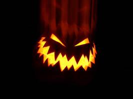 Pumpkin1 by fuchi
