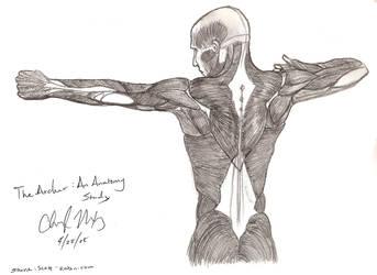 Study of Anatomy : The Archer by Herahkti