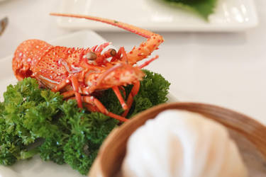 Lobster Bao by josephacheng