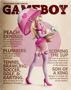 Gameboy Magazine: Peach Issue by steevinlove