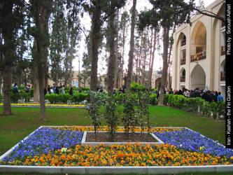 Fin garden by soroart2
