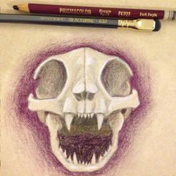 Cat Skull by Lulie
