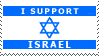 I Support Israel by Lulie