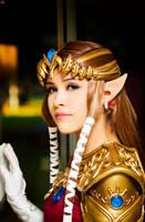 Princess Zelda... by LayzeMichelle