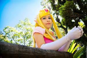 Toon Zelda by LayzeMichelle