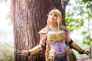 Hyrule Warriors Zelda cosplay by LayzeMichelle