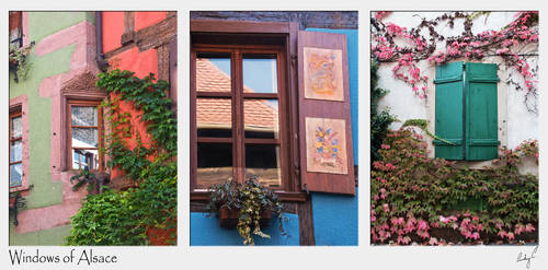 Windows of Alsace by 2Stupid2Duck