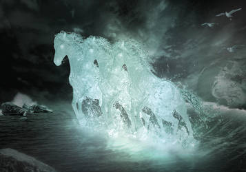 Seahorses by Pyrare