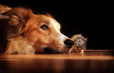 Real friends by Ksuksa-Raykova