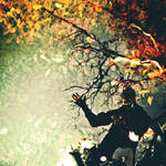 reflection of autumn by StopScreamGraphy