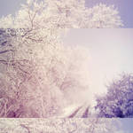 .winter.tale. by candymax