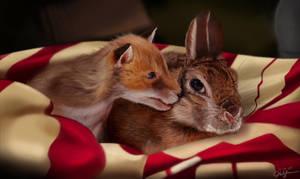 Rabbit and Fox cub by traithorz