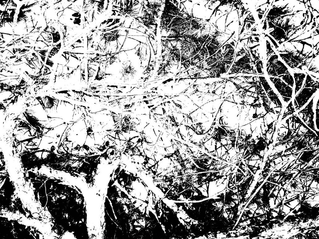 Complex by melihsaricam