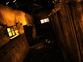 No Light by melihsaricam