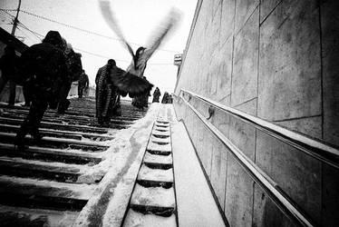 metro by pivan