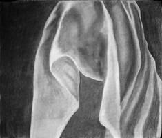 Shroud... by blanksofar