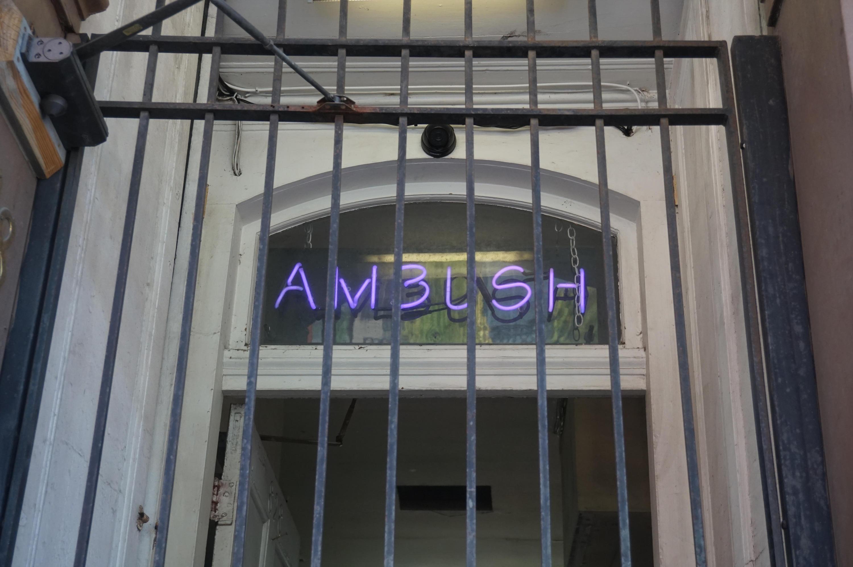 Ambush by operabutterfly