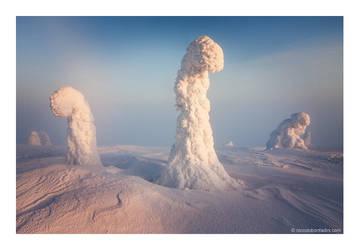 Sentinels of the Arctic by niccolobonfadini