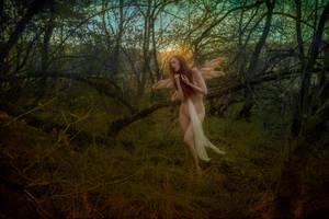 MidnightSummerNight by PsycheOphiuchus