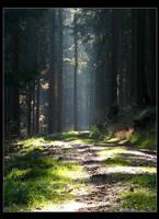 light rays at sunday by Niceshoot