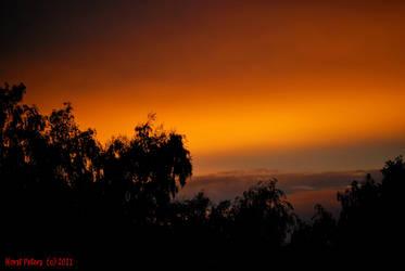Sunset 1 by bluesgrass