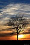 Sunset 52 by bluesgrass