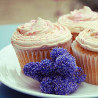 cuppycakes by chpsauce