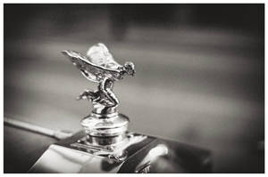 Spirit of Ecstasy by TenthMusePhotography