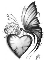 Butterfly by Tresdiasdegracia