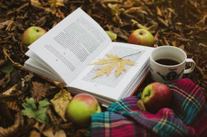 autumn vibes 7. by ilmari-nen