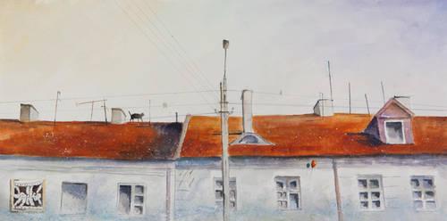 Roofs of Tykocin II by sanderus