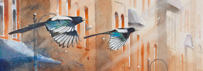 Magpies and Familoks by sanderus
