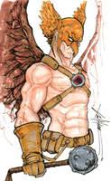 Hawkman by ChrisOzFulton